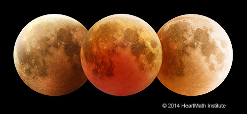 Lunar Phases and their Effects on Life on Earth and Earth Processes - lunar-eclipse