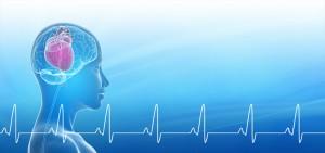 HMI Blog Heart Brain Interactions