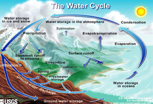 HMI Blog GCI Commentary Properties of Water – Does Water Have Memory or Consciousness? - diagram-water-cycle