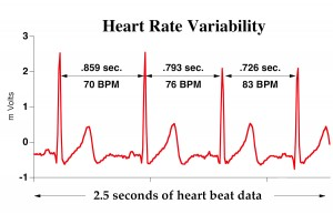 HMI Blog Personality and Heart Rate Variability