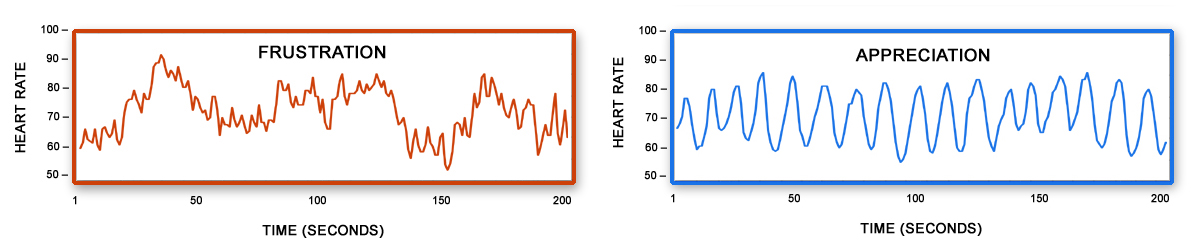 HMI Frustration - Appreciation Heart Rhythm graphs