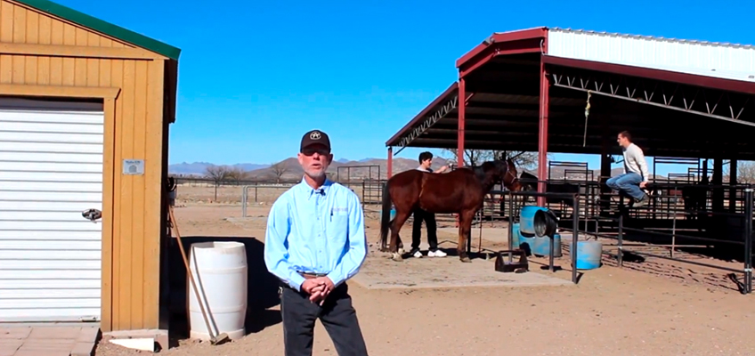 Arivaca Boys Ranch – owner