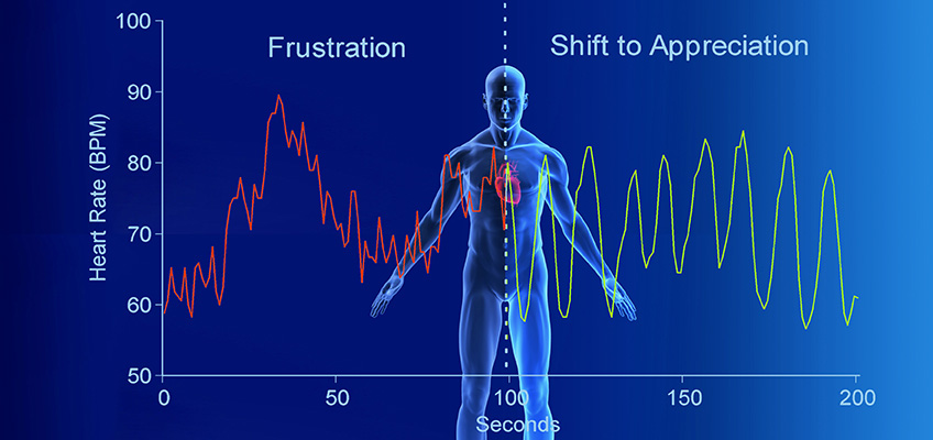 Article Explains Importance of Heart Rate Variability for Your Health