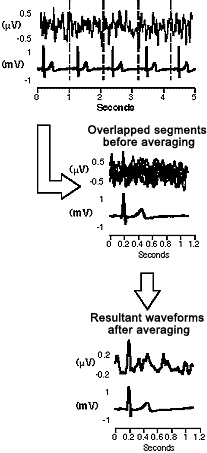 The Electricity of Touch research paper figure 2 signal averaging