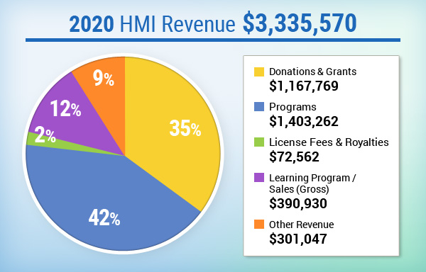 HMI Revenue