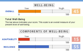 Stress and Well-Being Survey