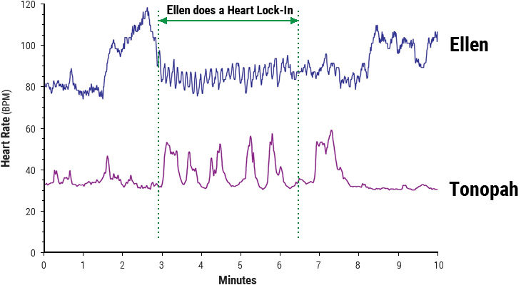 Heart-rhythm patterns of woman and horse