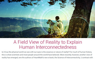A Field View of Reality to Explain Human Interconnectedness